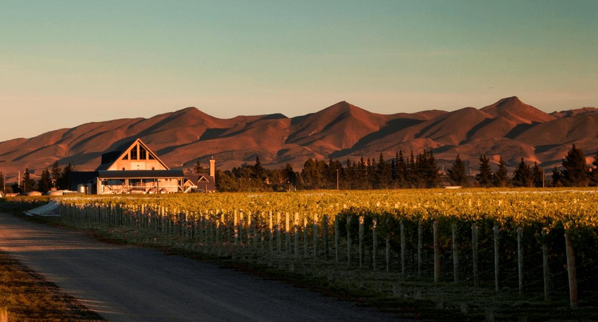 Waipara Hills Waipara